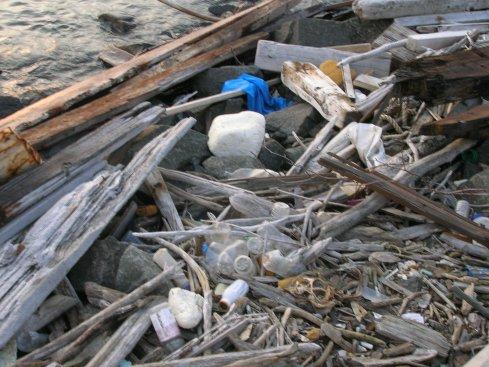 May 2009 photos of NY harbor garbage in Brooklyn
